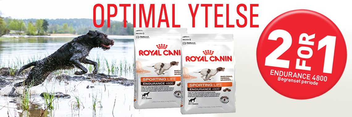 RoyalCanin Endurance 4800 - 2 for 1 - hos Trumf Trading